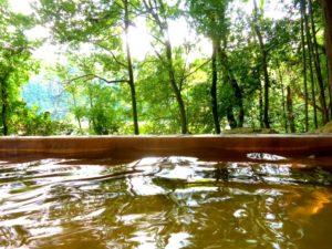 森林の中の温泉