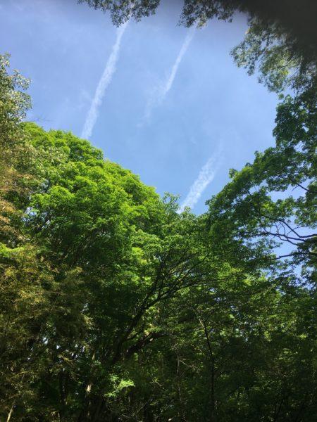 青空と龍雲