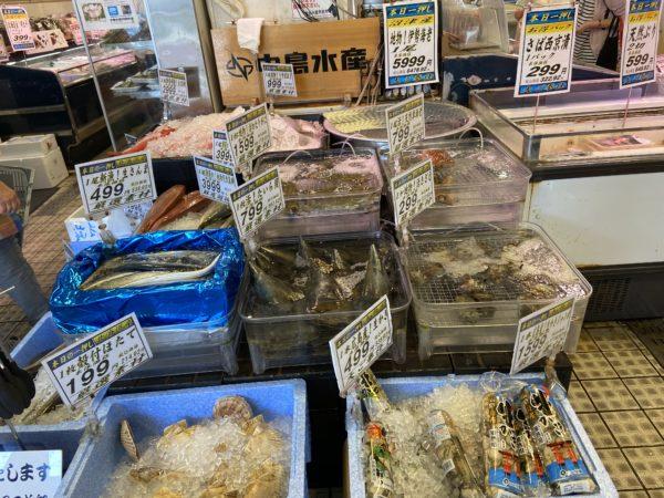 たくさん並んだ魚や貝