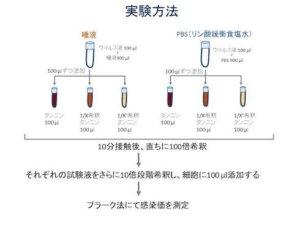 柿渋とコロナウィルス試験管実験の図